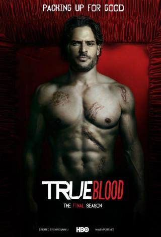 True Blood Alcide