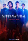 Supernatural – Постер за сезон 10